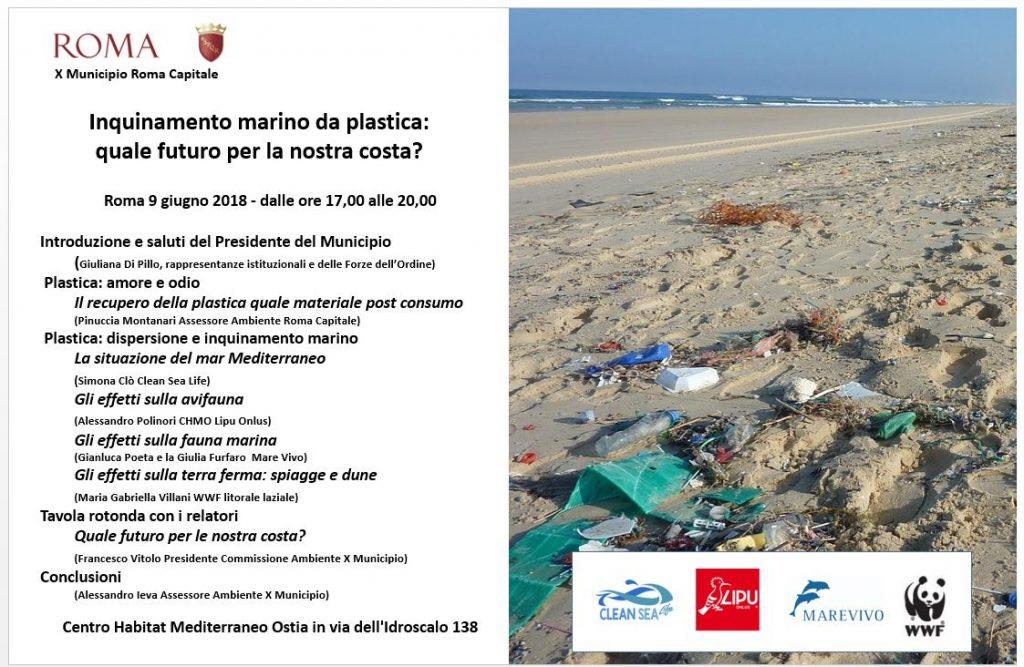 Inquinamento marino da plastica