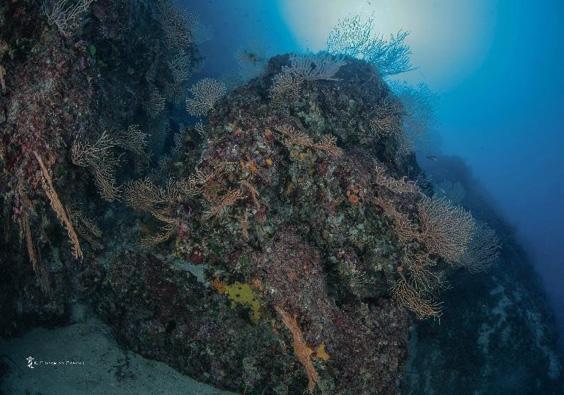 Fondali marina Ostia