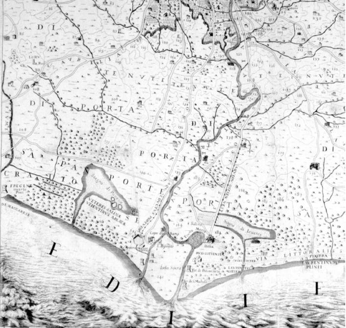 Aqua, Il delta del Tevere, Federica Maisto