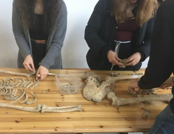 Open-Day-Servizio-Educativo Parco Archeologico Ostia Antica